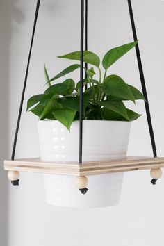 DIY Hanging Plant Holder: Make a Wooden Hanging Plant Pot Holder This post shares my DIY hanging plant holder tutorial. If you want to make a wooden hanging plant pot holder, check out the one I made from scrap wood! Diy Hanging Planter, Hanging Planters, Hanging Gardens, Hanging Flower Pots, Hanging Table, House Plants Decor, Plant Decor, Potted Plants, Indoor Plants