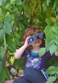 #ProvenWinners   Backyard Adventures - Creating gardens inclusive of our #kids in #Vancouver