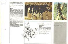 """TINGIMENTO NATURAL & CORANTES NATURAIS   """"... A Tecelagem Artesanal por Rodrigo *O Tecelão!... """" Tinta Natural, Textiles, Moose Art, Arts And Crafts, Weaving, Nature, Tear, Dyes, Painting On Fabric"""
