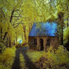 The Old Abandoned Cottage  Ireland Just a tiny cottage in the woods. That's all I need. 3:54