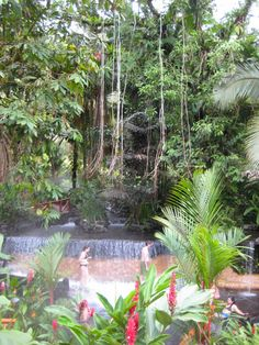 DeziStyle | Tabacon Hot Springs, Arenal, CR
