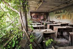 The empty school rooms in Prypyat- once the largest town in the zone with inhabitants - are being taken over by nature. Photograph: Gerd Ludwig/The Long Shadow of Chernobyl Abandoned Buildings, Old Buildings, Abandoned Places, Chernobyl Disaster, Chernobyl Nuclear Power Plant, National Geographic Photographers, Nuclear Disasters, Long Shadow, Haunted Places