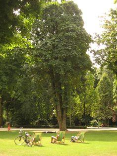 Cinquantenaire Park (Parc du Cinquantenaire)