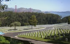 San Francisco National Cemetery ~ The Presidio National Park ~ San Francisco ~ California ~ A view from the San Francisco National Cemetery Overlook, which looks out over rows of white headstones on the sloping grass hillls that are bordered by forest.