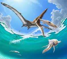 While we may not have time machines, a Canadian paleoartist, Julius Csotonyi, provides us with the next best thing in an illustration from his new book. Rhamphorhynchus, a long-tailed pterosaur, hypothetically feeding on squid.