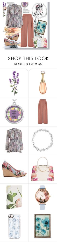 """Untitled #39"" by sarahaaaaa on Polyvore featuring Christian Dior, Topshop, Zimmermann, TOMS, Calvin Klein, Kate Spade, Olivia Burton, Casetify and Elico Ltd."