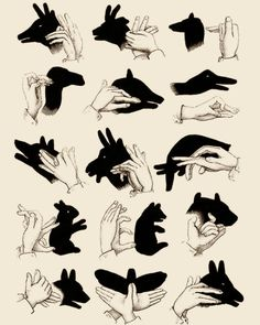 shadow puppetry: aha!