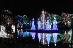 Columbus Zoo Lights  (Although you'll have to plan this one around the holiday season, it's well worth it if you're aiming for a true Winter Wonderland