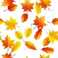 Autumn Seamless  #GraphicRiver         Autumn seamless pattern. 1. Fully editable EPS CS Vector illustration.  2. High Resolution RGB JPEG image.  	 In EPS CS version just use included pattern for filling any shapes.     Created: 7December12 Add-onFilesIncluded: VectorEPS #JPGImage MinimumAdobeCSVersion: CS Tags: abstract #autumn #autumnal #background #birch #botany #branch #bright #brown #colorful #decoration #design #drawing #fabric #fall #floral #forest #illustration #leaf #maple #natural…