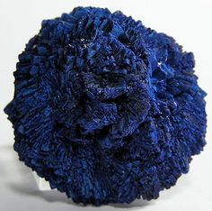 Azurite Mineral Specimen Blue Crystal Blossom by FenderMinerals