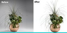 #ClippingPath #Outlining on the image. Are you looking for photo editing service provider? Try our service at once. Background Remover, Removal Services, Paths, Photo Editing, Image, Editing Photos, Photo Manipulation, Image Editing, Photography Editing