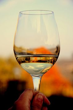 Cheers! Enjoying a glass in the autumn in the Langhe, Piemonte | Flickr - Ilaria Coradazzi CC