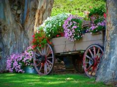 Antique wooden wagon filled with colorful flowers. Outdoor decor.