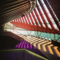 Sydney Opera House - Concert Hall in Circular Quay, NSW