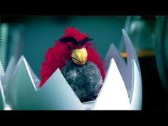 ANGRY BIRDS Movie Trailer. Okay. . .this is funny! At least I thought so!