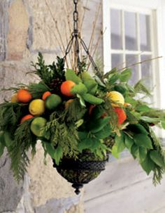 Hanging Planter Citrus Fruit Cedar Pine Boxwood Salal Leaves And Yellow Willow Branches