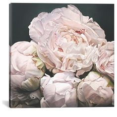 Icanvas 'Peonies' Giclee Print Canvas Art (390 BRL) ❤ liked on Polyvore featuring home, home decor, wall art, backgrounds, flowers, pictures, pink, flower wall art, flower canvas wall art and flower canvas painting