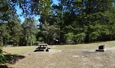 Cutters Camp campground | NSW National Parks