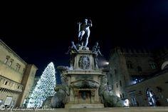 La fontana del Nettuno a Bologna con sottofondo l'albero illuminato. Una fantastica atmosfera di Natale.