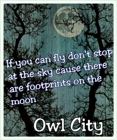 1000 images about quotes d on pinterest owl city adam young and shooting stars - Owl city quotes ...