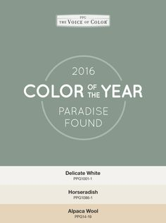 Color Of The Year Paradise Found