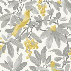 Royal Garden Yellow Wallpaper from Cole & Son Historic Royal Palaces Collection. A large scale wallpaper featuring colourful golden yellow birds in a grey cherry tree on a cream background. Cole And Son Wallpaper, Wallpaper Roll, Royal Wallpaper, Grey Wallpaper, Grey Yellow, Green And Purple, Golden Yellow, Coral Pink, Mulberry Home