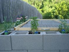 The torties are outside!  In May we finally built an outdoor Tortoise Habitat! we bought 52 cinder blocks and just lined them up.  here are ...