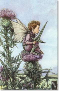 Cicely Mary Barker - Flower Fairies of the Summer - The Thistle Fairy Painting