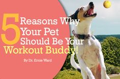 5 Reasons Why Your Pet Should Be Your Workout Buddy!   By Dr. Ernie Ward