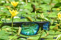 Bomber Eyewear sells Polarized Floating Sunglasses, Safety Sunglasses, and much more. See why everyone is buying Sunglasses from Bomber Eyewear. Buy Sunglasses, Sports Glasses, Never Stop Exploring, Ocean Life, Island Life, Eyewear, Surfing, Paradise, Lost