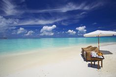How to Relax in Tropical Paradise.