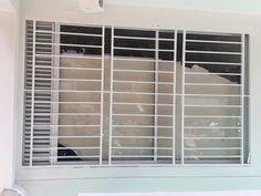 Modern Window Design, Window Grill Design Modern, Modern Windows, Modern Door, Home Window Grill Design, Balcony Grill Design, House Main Gates Design, Iron Gate Design, Staircase Metal