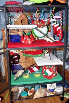 Decorating for Christmas rat cage! I love how they used teething rings to hang the hammocks.