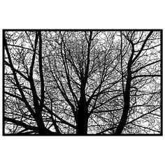 Branches Papercut original handcut 30x20 paper by papercutsbyjoe, $6000.00 : ) NOT THAT IM BUYING THIS JOE.