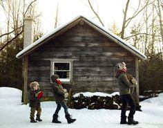 Winter in the woods. Winter Cabin, Winter Love, Snow Cabin, Winter Gear, Cabana, Wolf Photography, Cabin In The Woods, Cabins And Cottages, Its Cold Outside