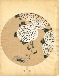 """Japanese antique woodblock print Ito Jakuchu """"White chrysanthemum from Jakuchu gafu"""""""