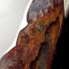 Rust Fusion | Ann Kate Davidson