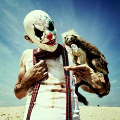 MOTHMEISTER's wounderland