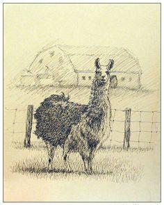 Llama llama duck.  #art #artists #sketch #drawing #ink #pen #farm #llama