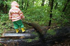 Schnitzeljagd Aufgaben für den Wald: Alles ist bereits da! Wie hier der Baumstamm zum Balancieren. Foto (c) kinderoutdoor.de