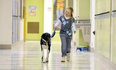 This little girl takes her Service Dog to school every day.