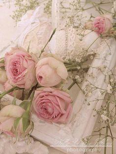 Zarte rosa Rosen in Shabby gebettet...Seufz, ist das Schön!