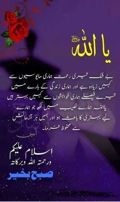Beautiful Great Birthday Urdu Sms Happy Birthday