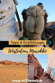 Bei einer Marokko Reise auf keinen Fall fehlen darf ein Ausflug in die Sahara! Bei einer Marokko Wüstentour geht es auf dem Rücken eines Kamels in die marokkanische Wüste, durch alte Lehmdörfer und grüne Oasen. Was gilt es für die Marokko Wüste einzupacken? Wie läuft so eine Tour ab? Das und vieles mehr findest Du in meinem Artikel. #marokko #sahara #wüstentour #wüste