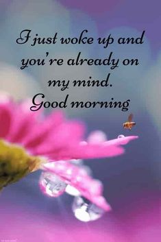 30 Good Morning Love Quotes and Wishes With Beautiful Images For Love Morning Quotes For Friends, Good Morning Quotes For Him, Good Morning Beautiful Quotes, Good Morning Images Hd, Good Morning My Love, Good Morning Texts, Good Morning Inspirational Quotes, Good Morning Greetings, Morning Humor
