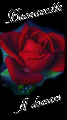 Corazones Gif, Laku Noc, Night Quotes, Good Night, Leadership, Madonna, Italy, Sign, Music