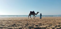 Surfing Marokko Taghazout Tamraght Beach #rassamblagoessurfing