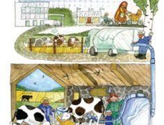 Maidon reitti, kuvitus Heli Pukki Science Nature, Environment, School, Kids, Young Children, Boys, Children, Boy Babies, Child