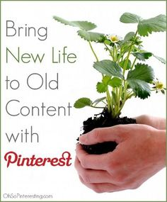 Old content can be a goldmine! Here's how to bring new life to old content with Pinterest