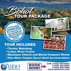 Bohol is a gem that is yet to be discovered by first-time international and local tourist! Be enthralled by the beautiful Chocolate Hills, mysterious tarsier and historical Baclayon Church by booking our educational and memorable travel package that showcases famous Philippine destinations!